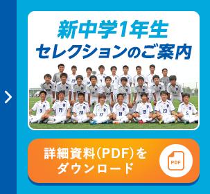 PDFダウンロード