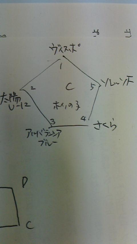 せいじコーチのブログ-2013050919340000.jpg